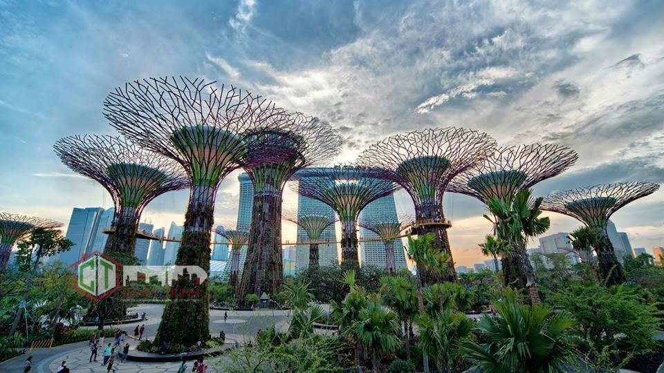 Khu vườn ánh sáng 2.4ha giống Garden by the bay - kỳ quan nhân tạo của Singapore... (hình minh họa)